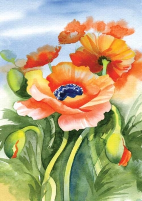 Poppies Posing - Standard Flag by Toland