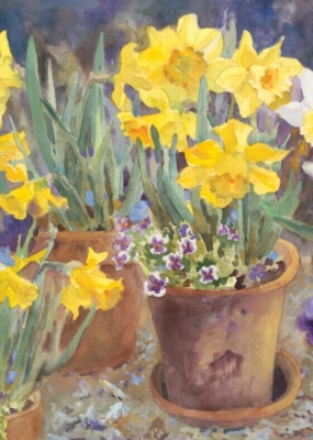 Potted Daffodils - Standard Flag by Toland