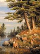 Jigsaw Puzzles - Hautman Brothers: Deer and Pines