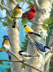Jigsaw Puzzles - Hautman Brothers: Songbird Favorites