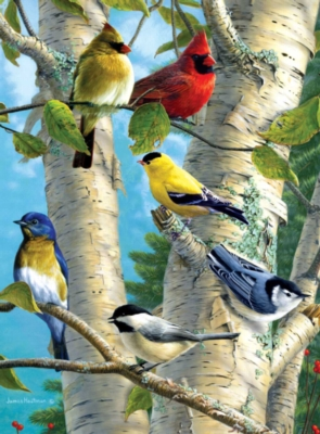 Jigsaw Puzzles - Hautman Brothers: Songbird Favorites