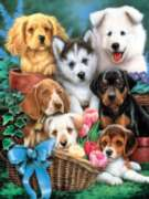 Puppy Pals - 750pc Jigsaw Puzzle by Masterpieces