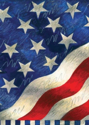 Star Spangled Banner - Standard Flag by Toland