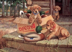 Cobble Hill Jigsaw Puzzles - Doggie Decoys