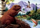 Beaver Lookout - 20pc Tray Puzzle by Cobble Hill