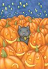 Peekaboo Cat - Garden Flag by Toland