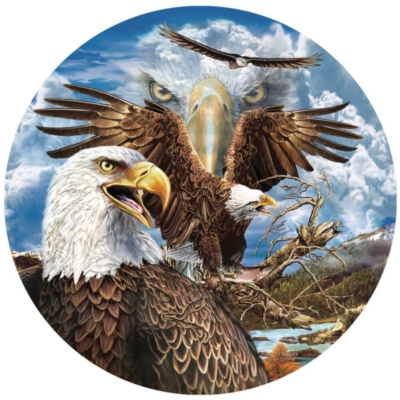 Jigsaw Puzzles - 13 Eagles