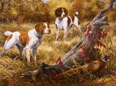 Jigsaw Puzzles - Brittany