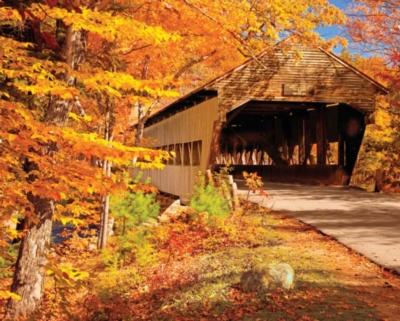 Springbok Jigsaw Puzzles - Autumn Covered Bridge