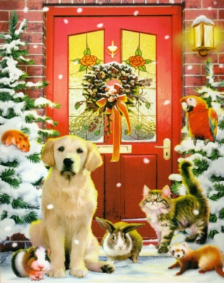 Christmas Puzzles - Christmas Welcome