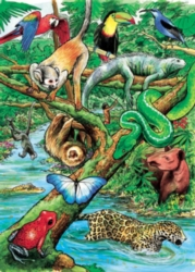 Cobble Hill Children's Puzzles - Life in a Tropical Rainforest