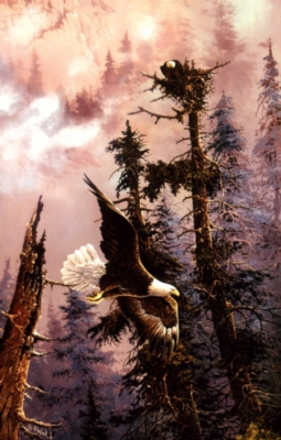 Jigsaw Puzzles - Nesting Eagles
