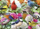 Garden Birds - 500pc Jigsaw Puzzle By Ravensburger