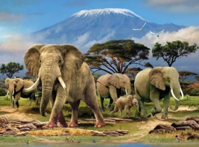 Animal Planet™ - Elephants - 1000pc Jigsaw Puzzle By Ravensburger