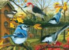 Backyard Feeder - 1000pc Jigsaw Puzzle By Jack Pine