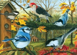 Jigsaw Puzzles - Backyard Feeder