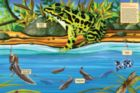 Life Cycle of a Nothern Leopard Frog - 48pc Floor Puzzle By Cobble Hill