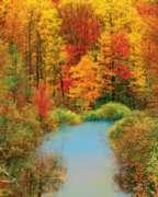 Springbok Jigsaw Puzzles - Autumn Reflection