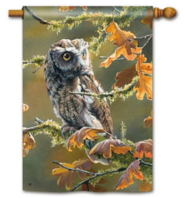 Autumn Owl - Standard Flag by Magnet Works