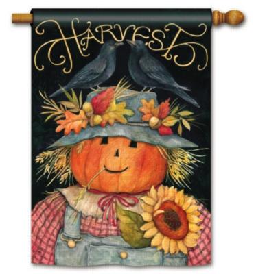 Harvest Scarecrow - Standard Flag by Magnet Works