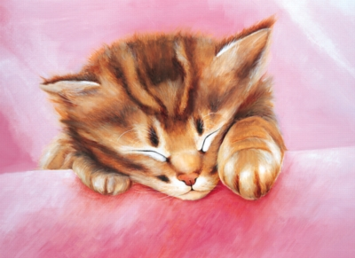 Tomax Jigsaw Puzzles - Dream Of Kitty