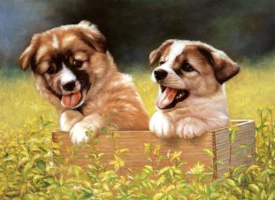 Tomax Jigsaw Puzzles - Doggie Garden