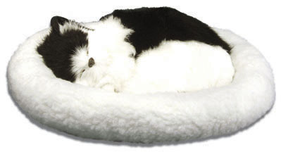Pet Nap: Black & White - 11'' Cat By Westminster