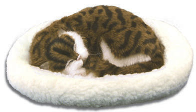 Pet Nap: Calico - 11'' Cat By Westminster