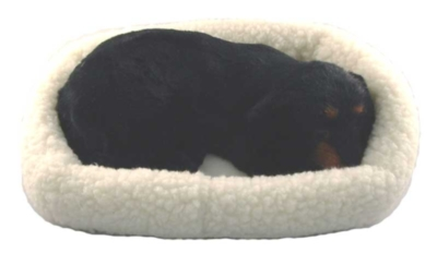 Pet Nap: Dachshund - 11'' Dog By Westminster