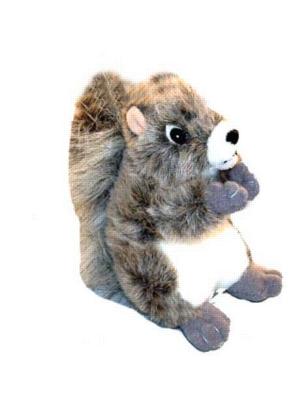Squirrel - 8'' Squirrel By Wildlife Artists