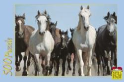 Jigsaw Puzzles - Wild Horses