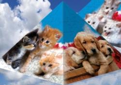 3D Puzzles - Cats Pyramid