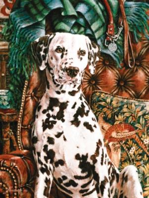 Jigsaw Puzzles - Dalmatian
