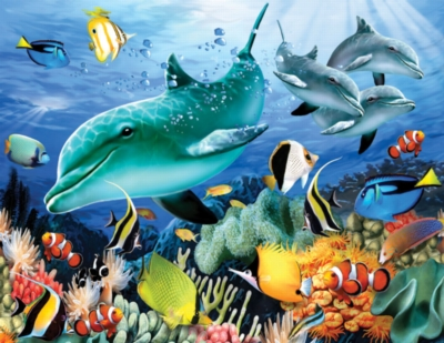 Large Format Jigsaw Puzzles - Dolphin Light