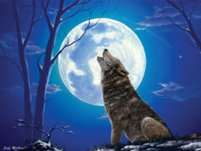 Jigsaw Puzzles - Lone Wolf