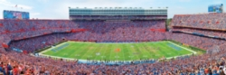 Panoramic Jigsaw Puzzles - University of Florida: The Swamp