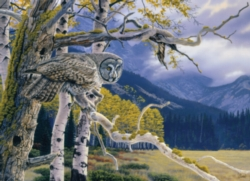 Cobble Hill Jigsaw Puzzles - Great Grey Owl