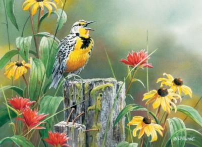 Cobble Hill Jigsaw Puzzles - Meadowlark Morning