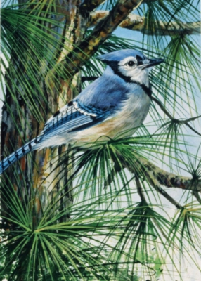 Ravensburger Large Format Jigsaw Puzzles - Blue Jay