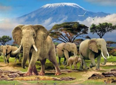 Ravensburger Jigsaw Puzzles - Elephants