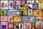 Shared Moments - 1000pc Jigsaw Puzzle By Educa