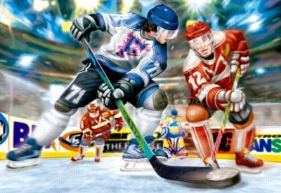 Educa Jigsaw Puzzles - Ice Hockey