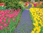 Springbok Jigsaw Puzzles - Trail of Blooms