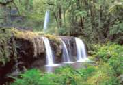 Tomax Jigsaw Puzzles - The Falls