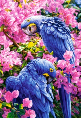 Blue Parrots - 1000pc Jigsaw Puzzle by Castorland