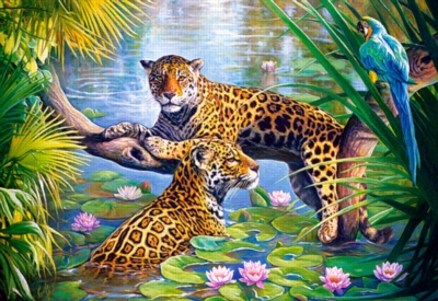 Rest on the Branch - 500pc Jigsaw Puzzle by Castorland