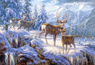 Winter Mountain Light - 1000pc By Castorland