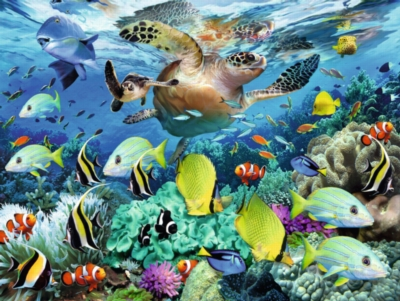 Jigsaw Puzzles for Kids - Underwater Paradise