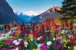 Ravensburger Jigsaw Puzzles - Flowery Mountains