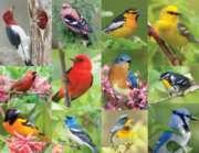 Springbok Jigsaw Puzzles - Birds of a Feather